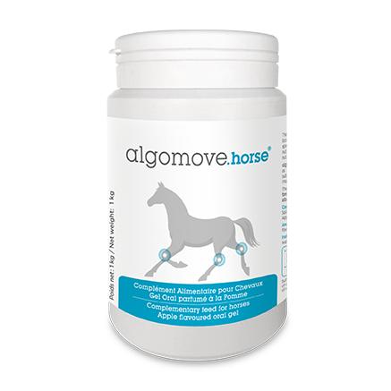 Algomove Horse®